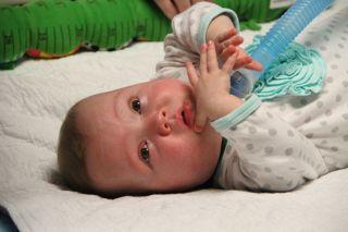babies, premies, premature babies, viagra