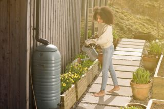 woman saving water with garden irrigation from water butt