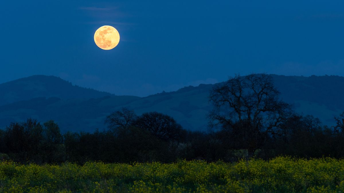 Catch March's full supermoon Worm Moon this Sunday – Livescience.com