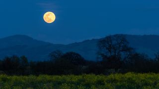 full moon over a field