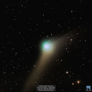 Comet Catalina by Richard Tyson