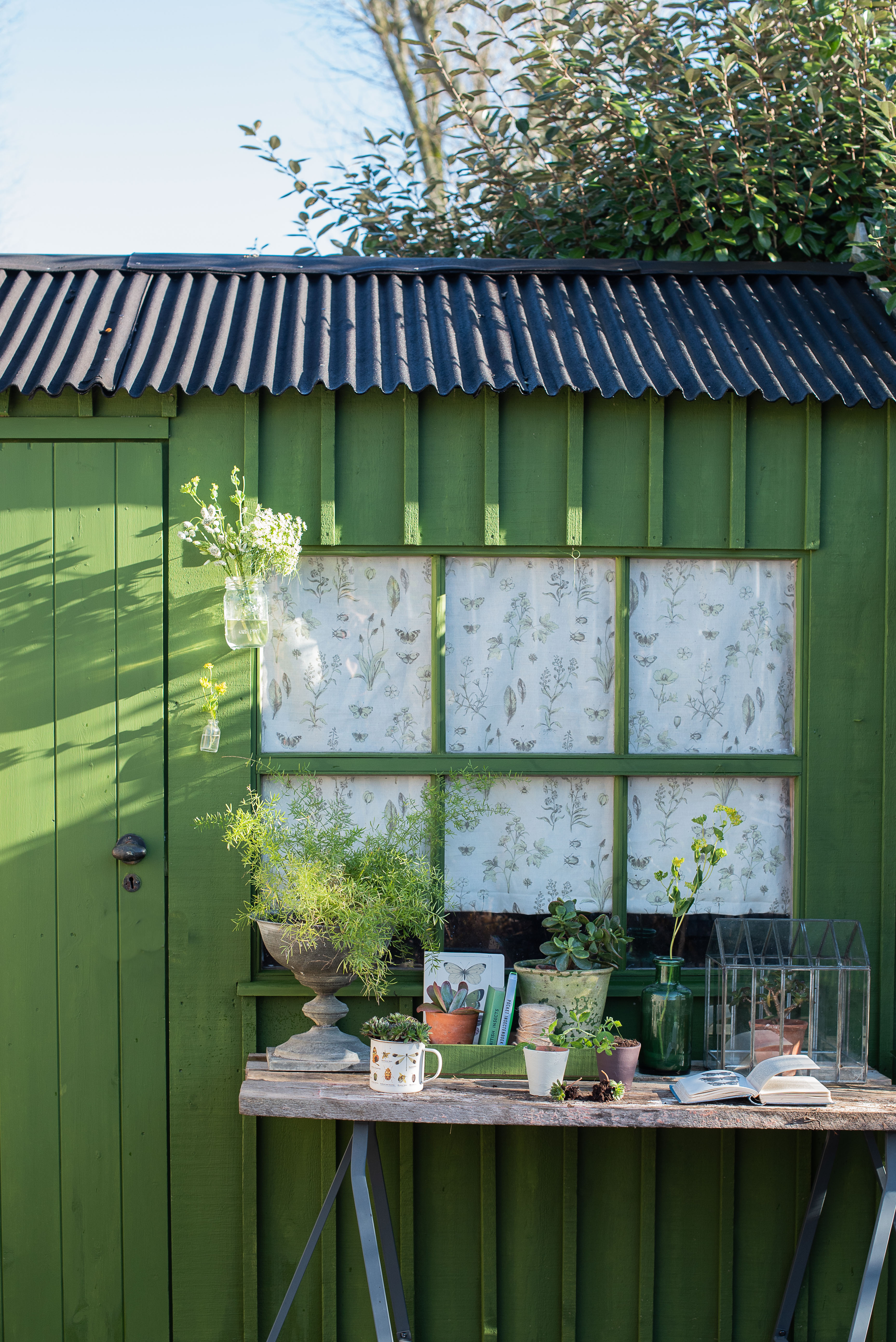 5 Gorgeous Shed Paint Ideas To Update Your Garden Quickly Real Homes