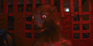 Weasel in The Suicide Squad