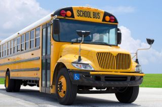 school bus, bus