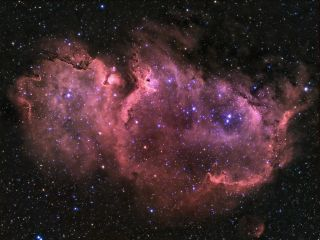 Soul Nebula IC 1848 Steve Coates