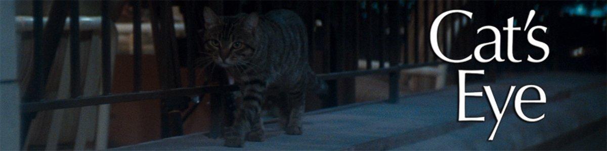 Adapting Stephen King banner Cat's Eye