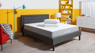 best mattress: Nectar