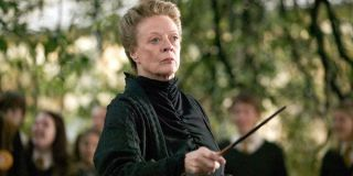Maggie Smith in _Harry Potter._