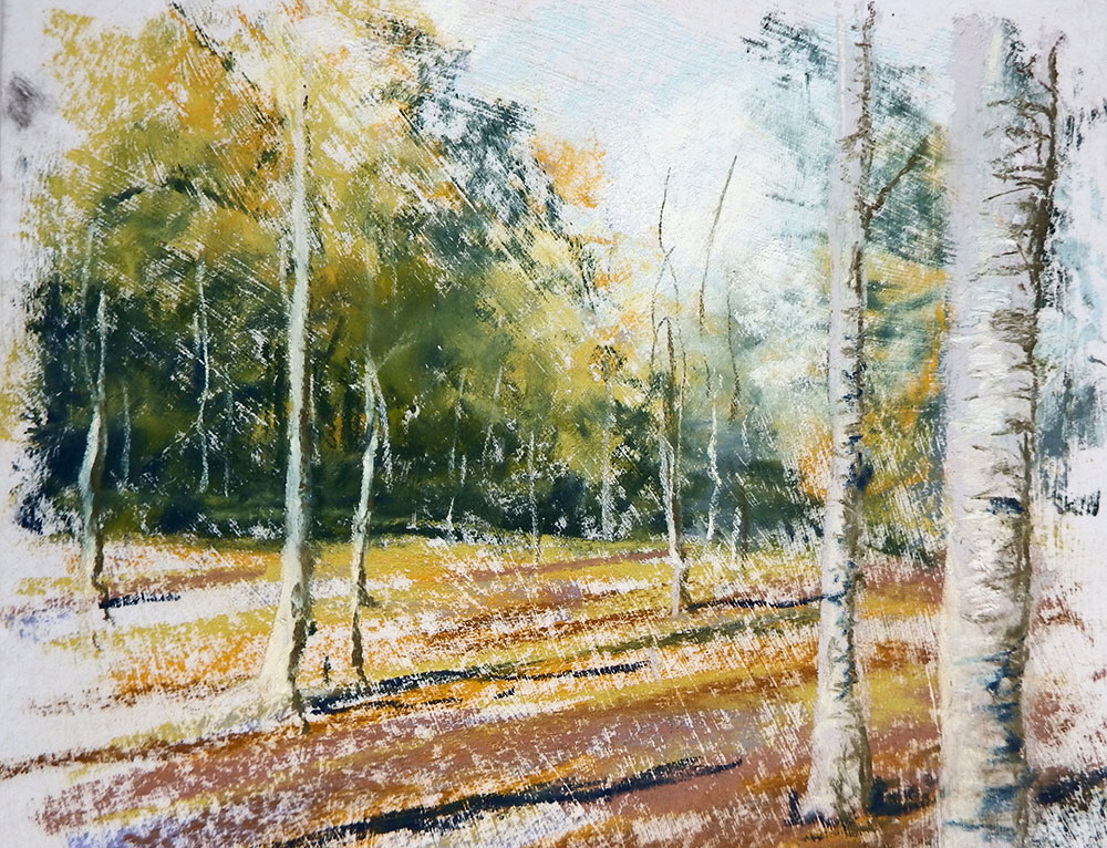 Pastel drawing of birch trees