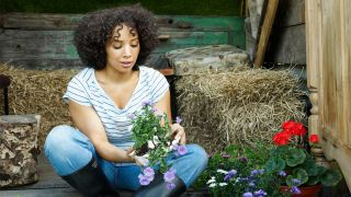 Gardening can improve your mental health during the coronavirus pandemic, here's how