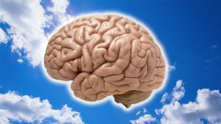 A picture of a brain set against a blue sky.