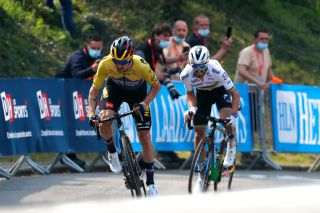 MUR DE HUY BELGIUM APRIL 21 Primoz Roglic of Slovenia and Team Jumbo Visma Julian Alaphilippe of France and Team Deceuninck QuickStep sprint on arrival during the 85th La Fleche Wallonne 2021 Men Elite a 1936km race from Charleroi to Mur de Huy 204m FlecheWallonne on April 21 2021 in Mur de Huy Belgium Photo by Bas CzerwinskiGetty Images