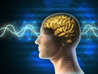 From the Deepest Coma, New Brain Activity Found | Live Science