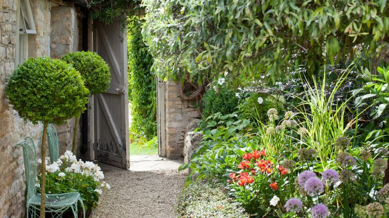 side garden ideas with gate gravel and potted plants