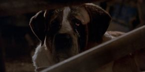 Cujo: 10 Behind-The-Scenes Facts About The Vicious Stephen King Movie