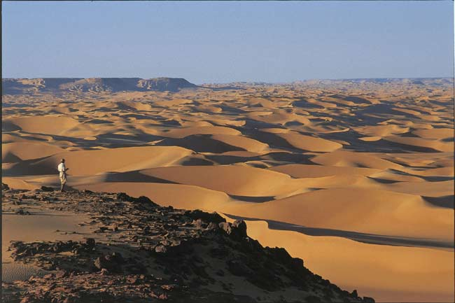 Sahara Desert Was Once Lush And Populated Live Science