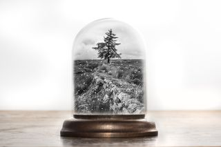 Use one of your own photos to make a seasonal snow globe