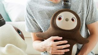 Hug me, Dave: are robot pets and companions useful or just