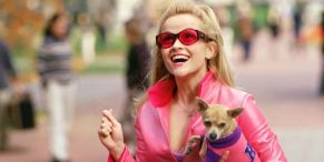 Reese Witherspoon Movies And TV: What To Watch Streaming If You Love The Legally Blonde Star