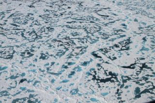 arctic-ice-melt-ponds
