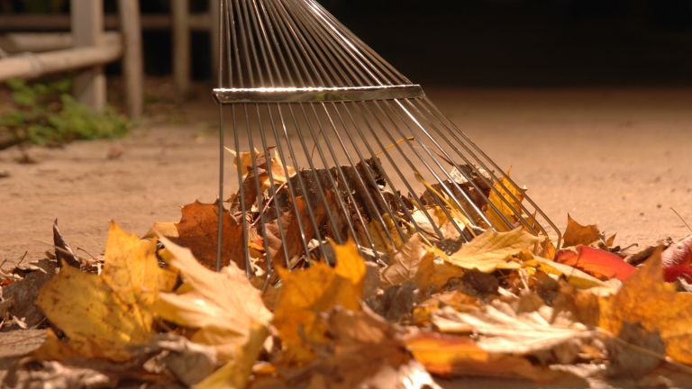 best garden tools 2020: Burgon & Ball leaf rake