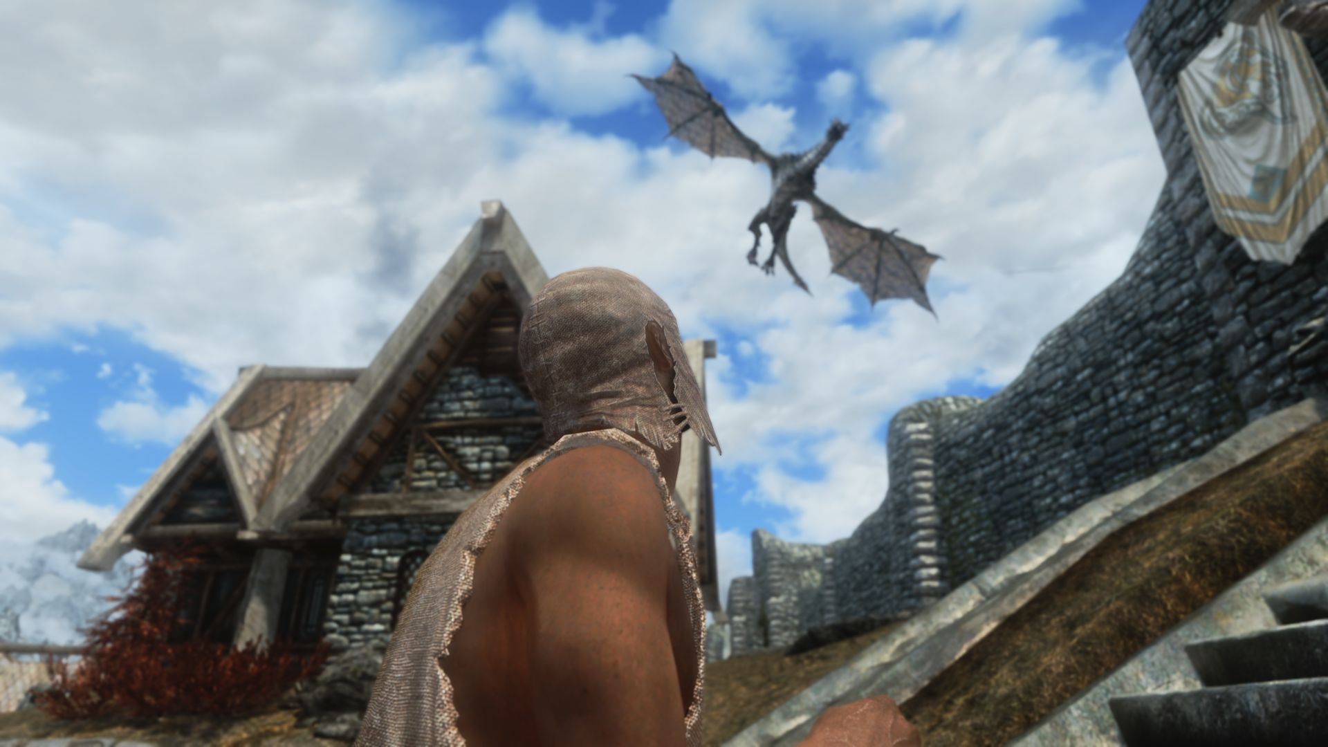 the best skyrim mods: immersive citizens