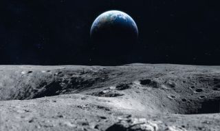 Scientists want to store the DNA of 6.7 million species on a lunar ark as a backup.