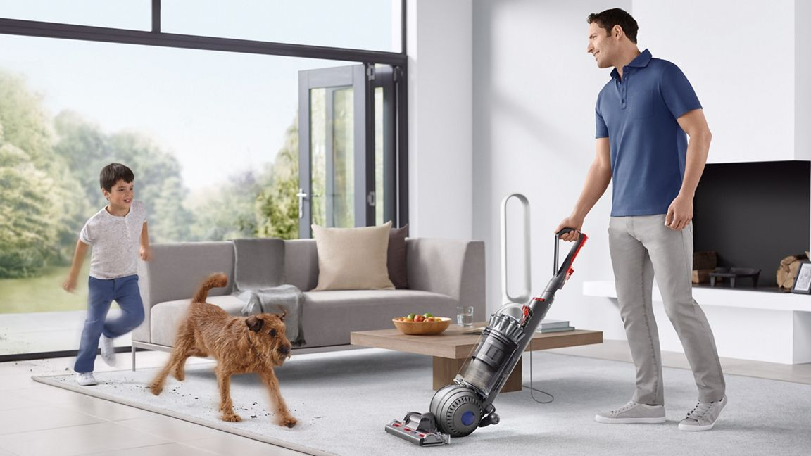 Should you invest in the Dyson Ball Animal 2 vacuum? The answer is yes – here's why
