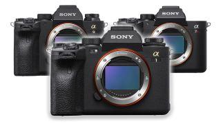 Sony A1 vs A9 II vs A7R IV