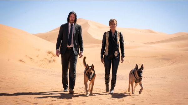 Keaunu Reeves, Halle Berry and 2 dogs walking in the desert