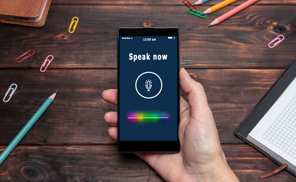 Your Voice Is No Longer Your Own: Fooling Audio Logins with