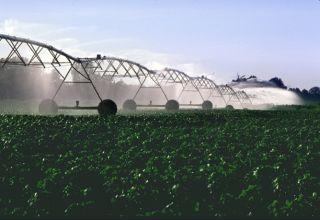 farming, phosphorous, health