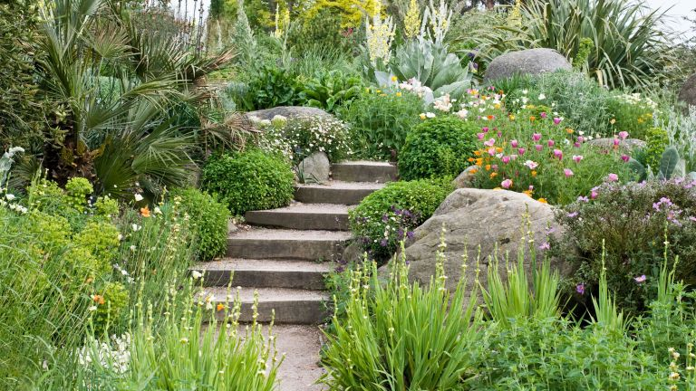 steps through alpine planting for sustainable gardens
