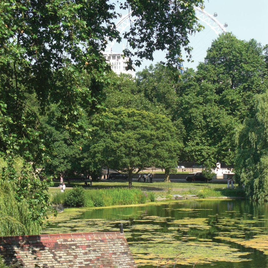 London's Iconic Green Spaces: The Royal Parks