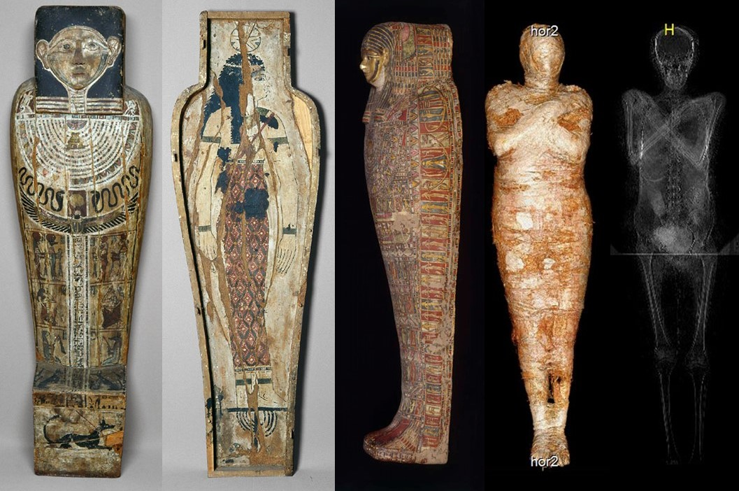 The coffin, cartonnage case and pregnant mummy.