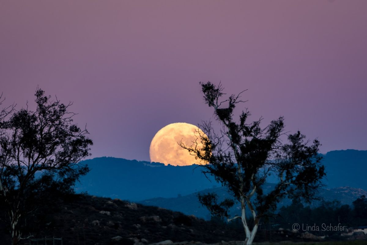 blood moon january 2019 viewing guide - photo #34