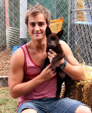 Meet Bossy, Kyle's new canine pal in Neighbours