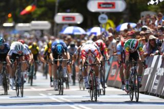 Elia Viviani (Deceuninck-QuickStep) is pretty sure he's got it ahead of Lotto Soudal's Caleb Ewan at the 2019 Cadel Evans Great Ocean Road Race