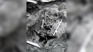 This skeleton of a soldier was found on a beach at Herculaneum in 1982. Recent research suggests that the soldier may have been part of a rescue mission.