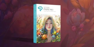 Paint Pro box