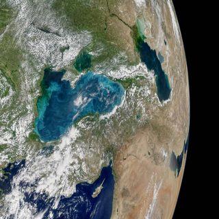 Phytoplankton swirl in the Black Sea