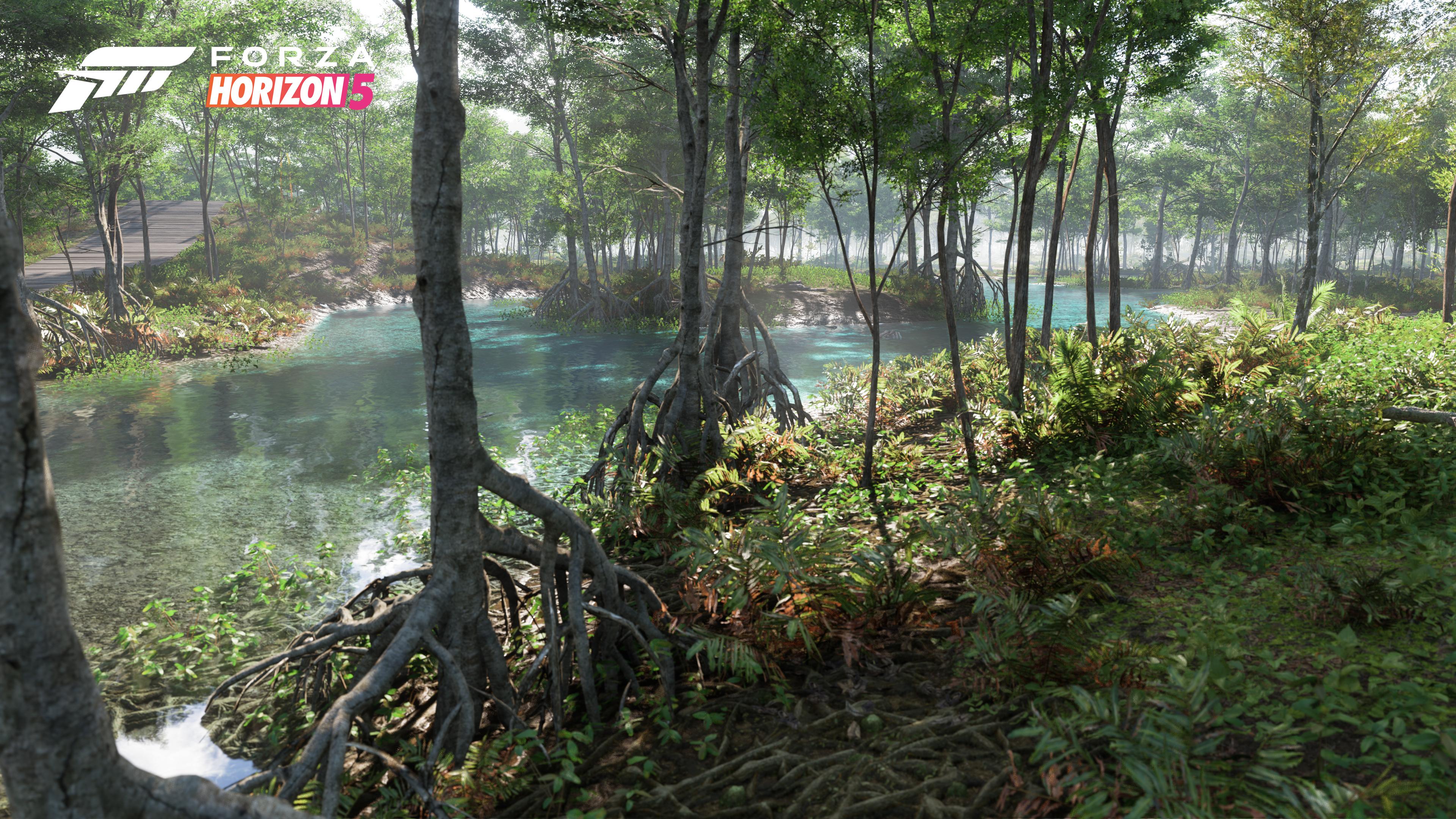 Forza Horizon 5 swamp