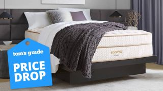 Saatva mattress sale
