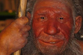 Early human survival