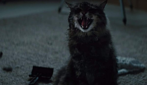 Pet Sematary Church hissing in the bedroom