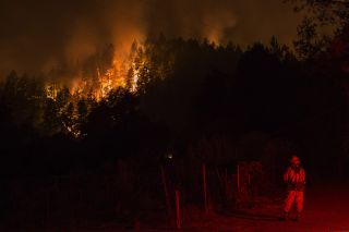 A wildfire sweeps through the forest, down the south side of Dry Creek Canyon, at the Partrick Fire on Oct. 12, 2017, west of Napa, California.