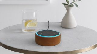 Echo devices can now make calls and send messages on Alexa's