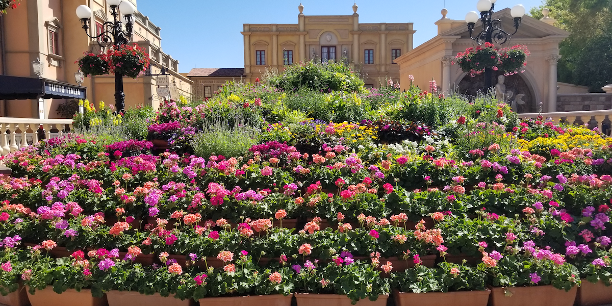 Flowers in Italy Pavilion at Epcot