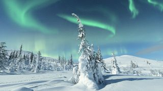 Snowy landscape with aurora overhead