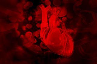 A heart illustration.